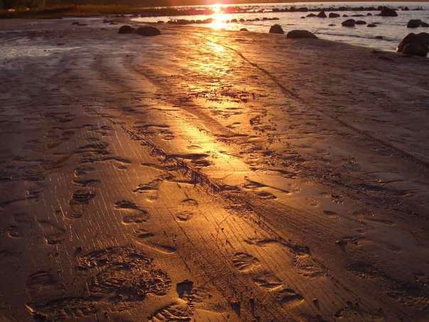 footprints_in_the_sand-w