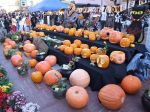 800px-halloween_festival_tama-center