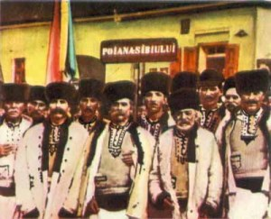 poiana1