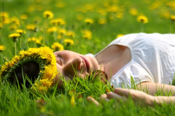 girl in a field of yelloow flowers
