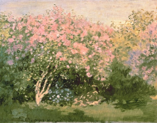 Claude Monet - Lilac in the Sun