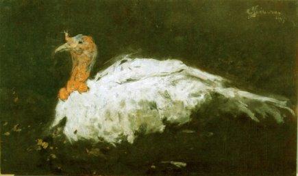 Eustațiu Stoenescu - Curcan alb