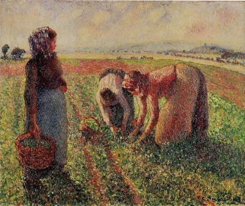 Camille Pissarro - Picking Peas