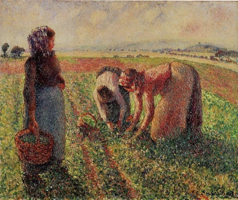 Camille Pissarro - Picking Peas