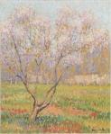 Henri Martin-Trees in bloom