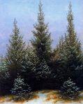 Caspar David Friedrich - Pine Thicket