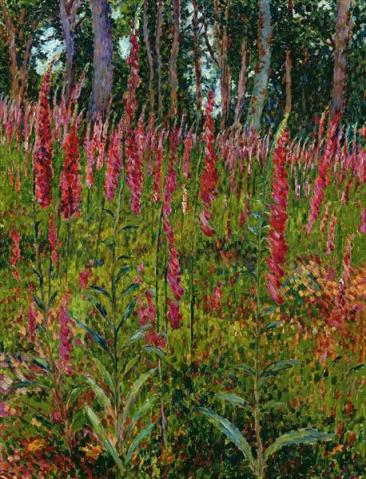 Georges Lacombe - Foxgloves