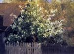 Isaac Levitan - Bird Cherry tree