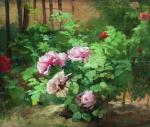 Parfumul rozelor de august
