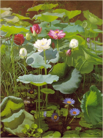 Otto Didrik Ottesen - Lily Pond