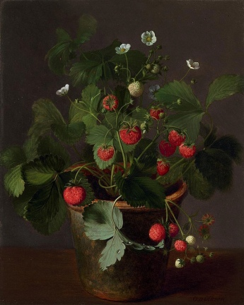 Otto Didrik Ottesen - Strawberries in a Pot