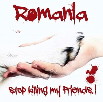 PROTEST AGAINST MASS KILLING OF HEALTHY DOGS IN ROMANIA !!!