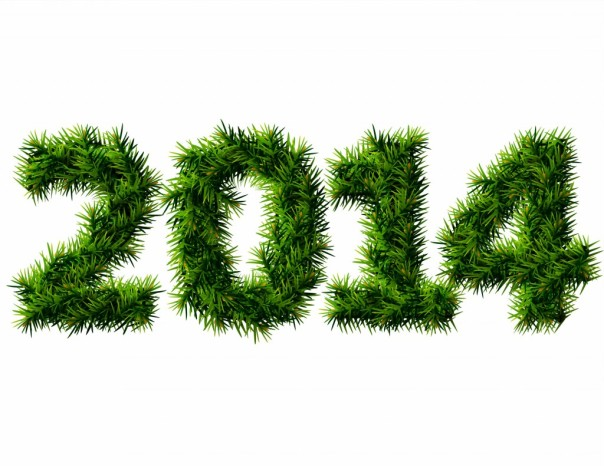 Happy-New-Year-2014-Grass-HD-Wallpaper-1024x791
